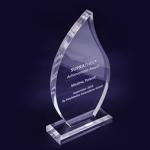 Nagroda Medew